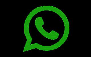 come funziona la versione business di WhatsApp